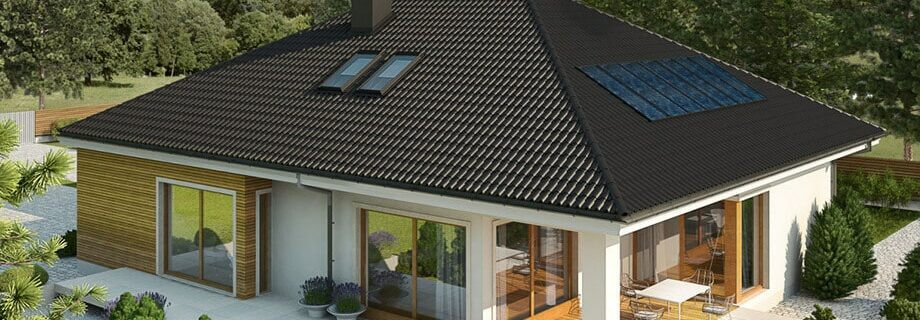 The idea of a Panya style house